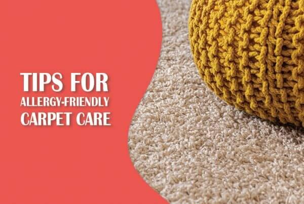 carpet cleaning blog